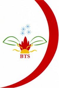 Logo BTS_Hd